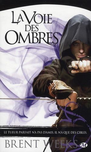 L'Ange de la Nuit, tome 1 : La Voie des Ombres dans Critiques et chroniques littéraires lavoiedesombres